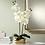 "Thumbnail: Dahlia Studios White Orchid 22"" High Faux Flowers in Gold Ceramic Pot"