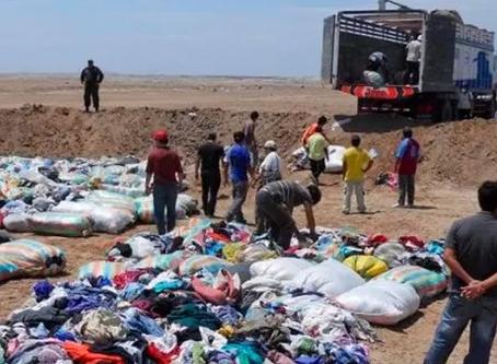 SUNAT: Plazo para presentar informe de destrucción de existencias en estado de emergencia -Desmedros