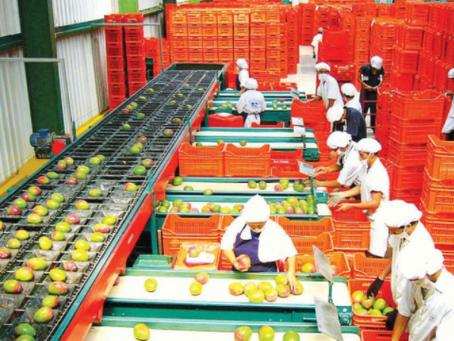 El Saldo a Favor del Exportador y el Drawback en los Consorcios Sin Contabilidad Independiente