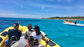 Boat charter mallorca.jpg