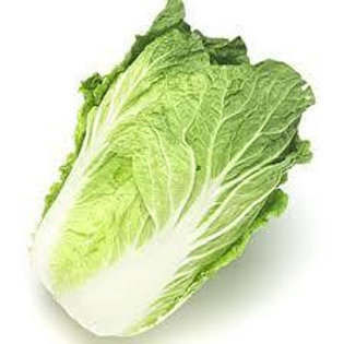 Chinese cabbage whole 白菜