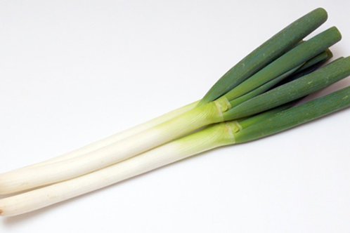 Onion leeks 1 piece ネギ