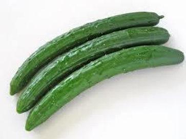 Cucumber 1 piece きゅうり
