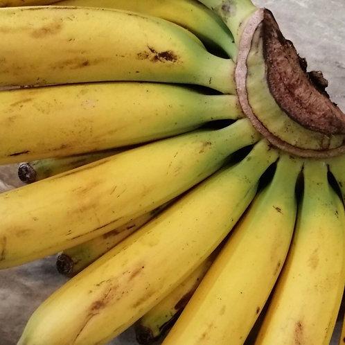 Banana バナナ(5本)