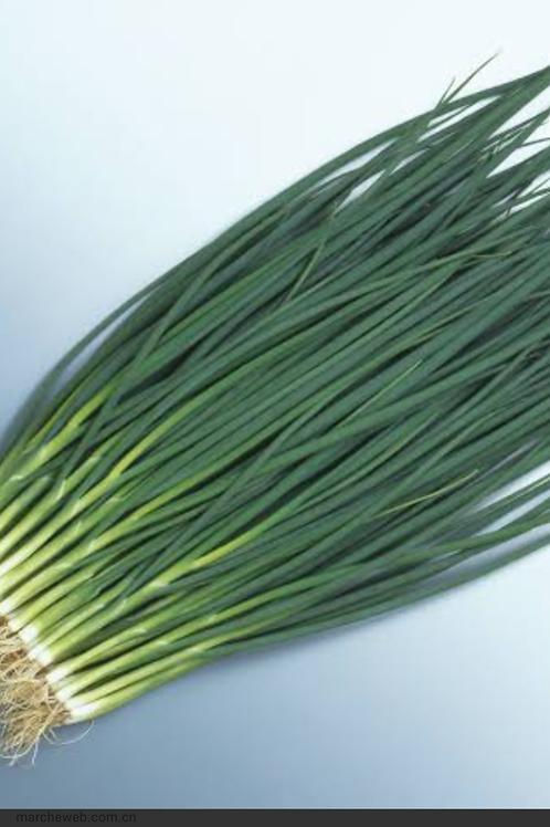 Spring onion 小ねぎ 100g