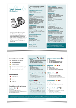 Type 2 Diabetes Medication Pamphlet