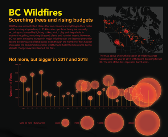 Data Visualization of BC Wildfires