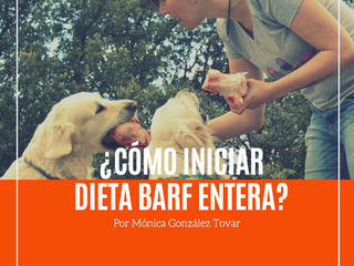 ¿Cómo iniciar con la dieta Barf entera?