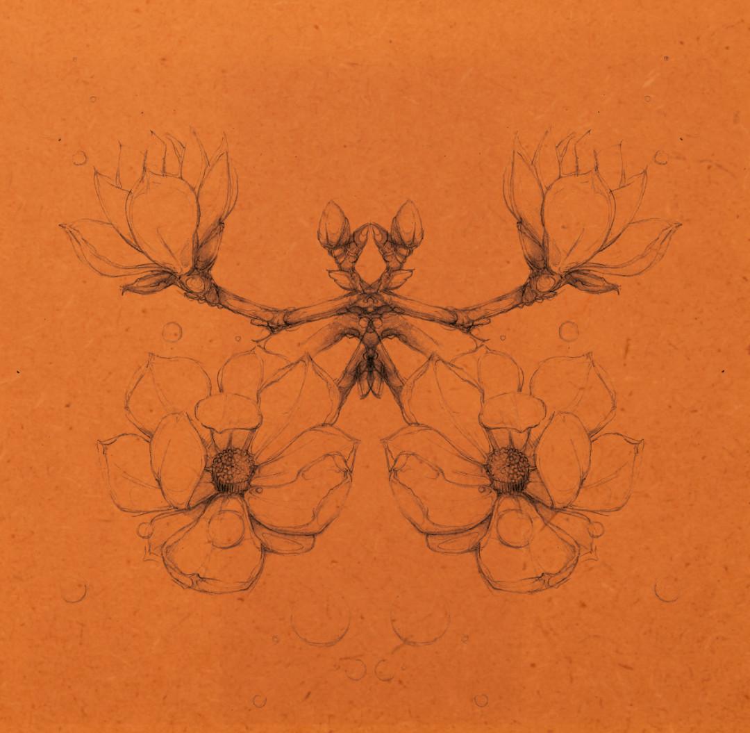 Magnolie lowres 7.jpg