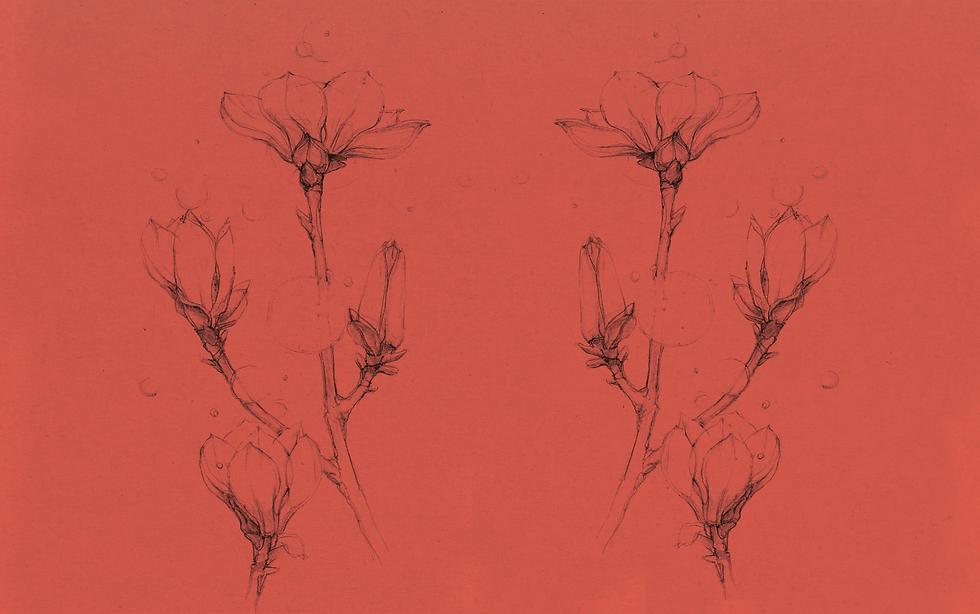 Illustration 2 Visual Design Zeichnung M