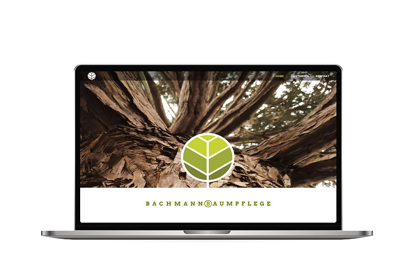 Web Design Frontpage Bachmann Baumpflege