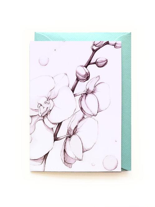 Orchidee Grusskarte A6 aufklappbar / Couvert C6