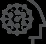 VA icon.png