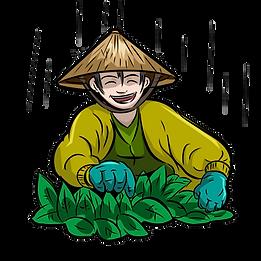 Happy Tea Farmer.png