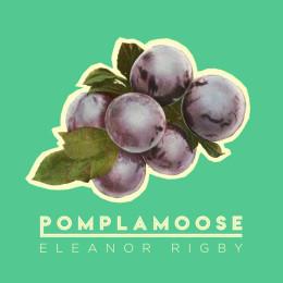 "Pomplamoose ""Eleanor Rigby"""