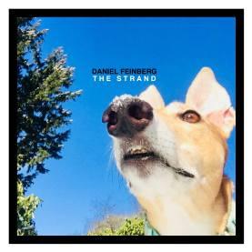 """Daniel Feinberg """"The Strand"""""""