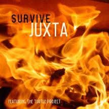 "Juxta / The Turtle Project ""Crash and Burn"""