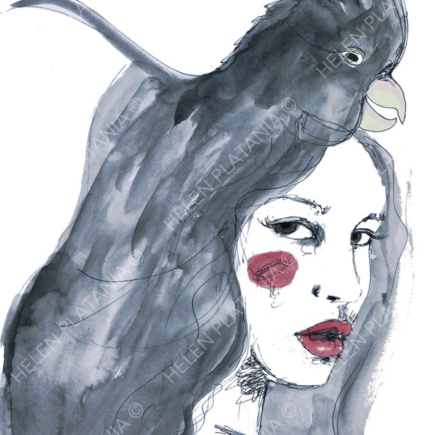 Black Cockatoo   Helen Platania Art