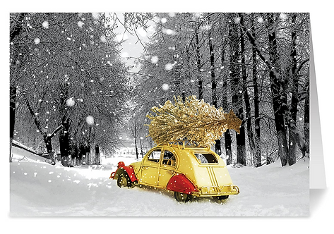 Delivering Warmth Holiday Cards & Envelopes,  5x7 (set of 18)