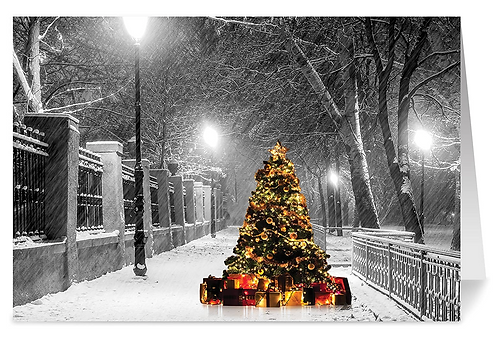 Lighted Tree Holiday Cards & Envelopes,  5x7. (set of 18)