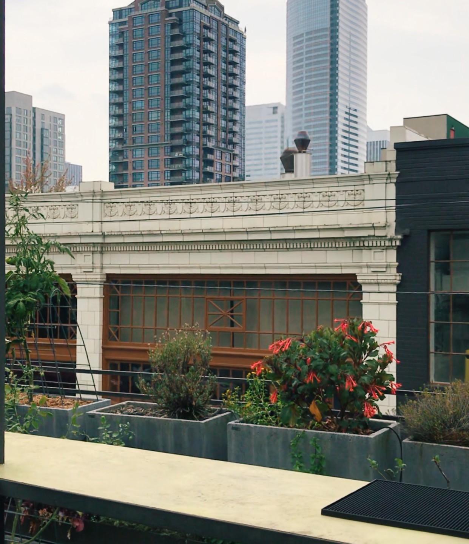 Terra Plata, rooftop garden