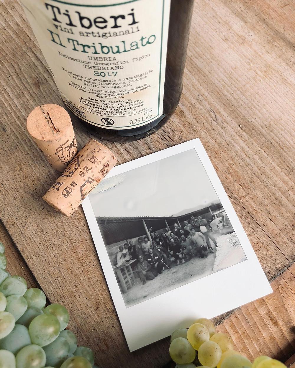dry farm wines ristretto in stilettos
