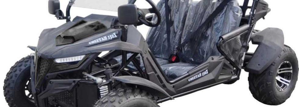 TTC K5 200X Dune Buggy