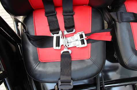 Quick Release 5 Point Harness