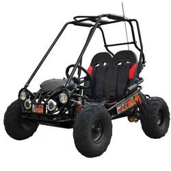 TTC FX5 XR Dune Buggy