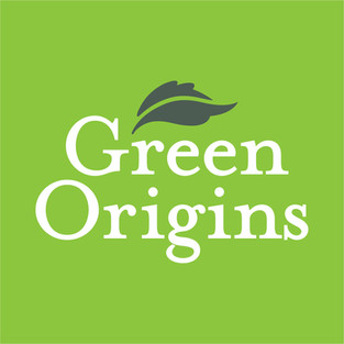 lauren reis design green origins.jpg