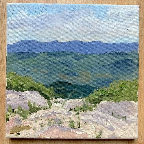 """""""Dolly Sods -July Afternoon"""""""