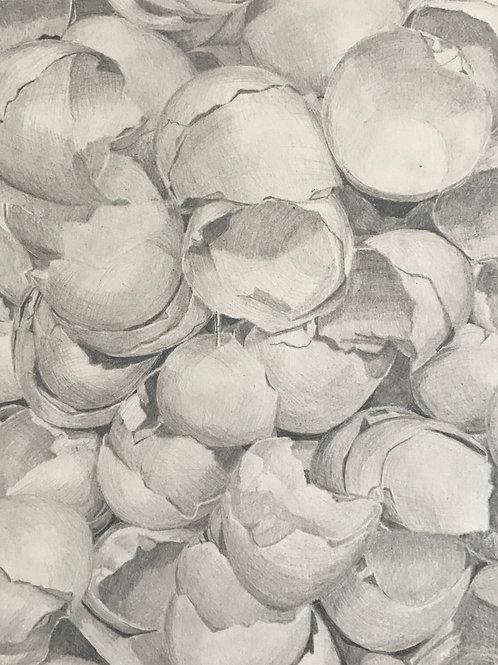 """Egg Shells #8"""