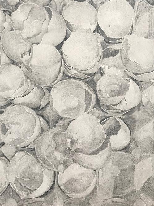 """Egg Shells #9"""