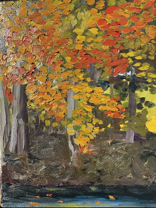 """""""Orange Underbrush - Marsh Creek"""""""