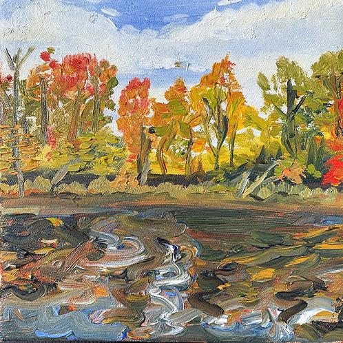 """Muddy Reflections - Marsh Creek"""