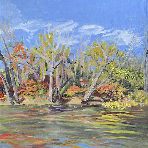 """Colors Change - Marsh Creek"""