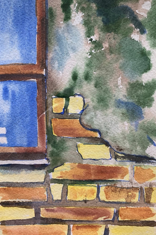 """Zoo Window - Rome"""
