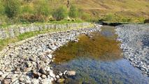 Bioengineering in Delphi to rehabilitate eroding riverbank and enhance salmonid habitat