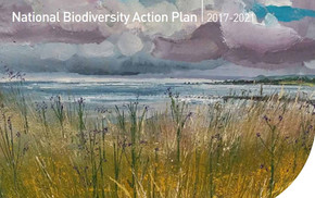 Biodiversity Plan review welcomed by Minister Noonan