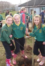 Planting the trees at Gaelscoil Osrai