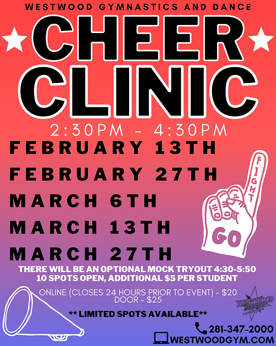 cheer clinic (1).png