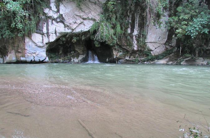 rio-claro-jungle-river-private-tour-from