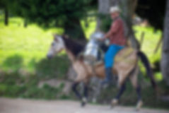 Belmira, Colombia Cowboy