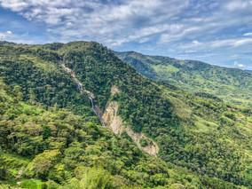 Cocorna Vista.jpg