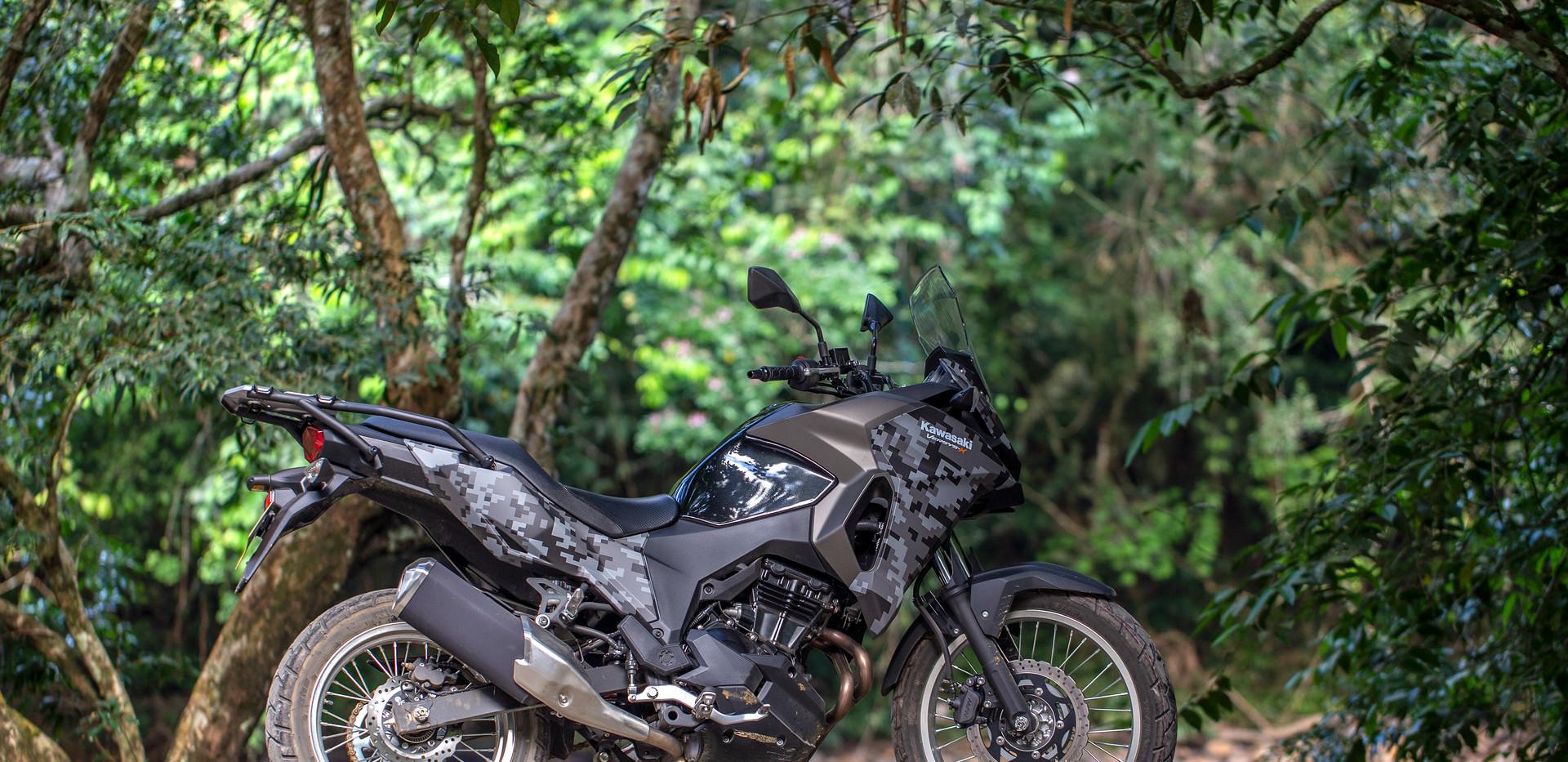 Kawasaki Versys-X 300.jpg