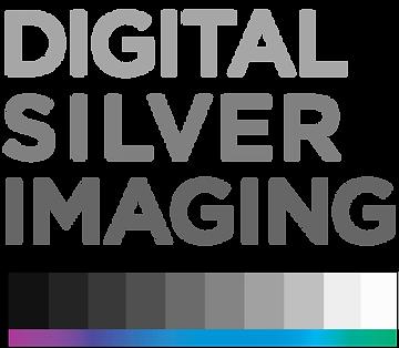 Digital Silver Logo.png