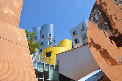 4_Gehry copy.jpg