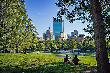 1024px-People_under_tree_in_Boston_Commo