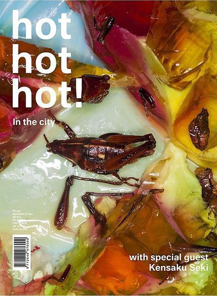 Hot-hot-Hot-Maisie-Cousins-cover_modifié