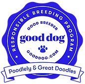 poodlely-great-doodles-florida-badge.png